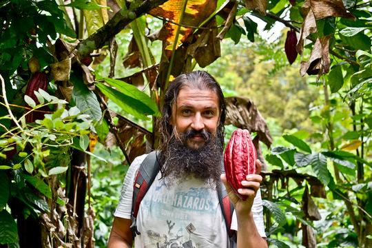 неизвестный фрукт в руках