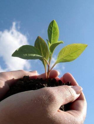 Ответственность вместо отговорок – залог успеха